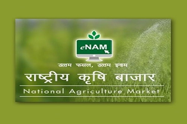 Governmentt to link 22,000 rural markets to the e-NAM portal
